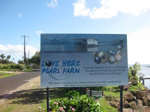 Love Here Pearl Farm?