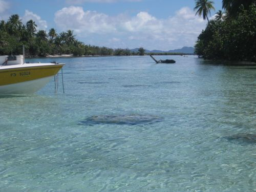 The Coral Garden Snorkeling Area